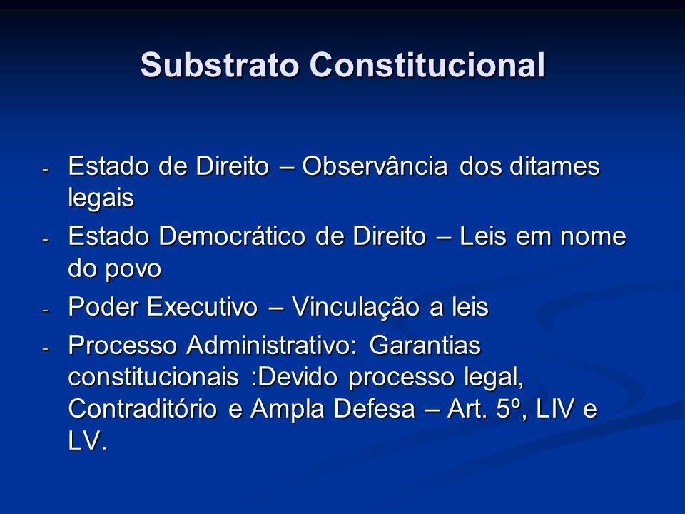 Substrato Constitucional