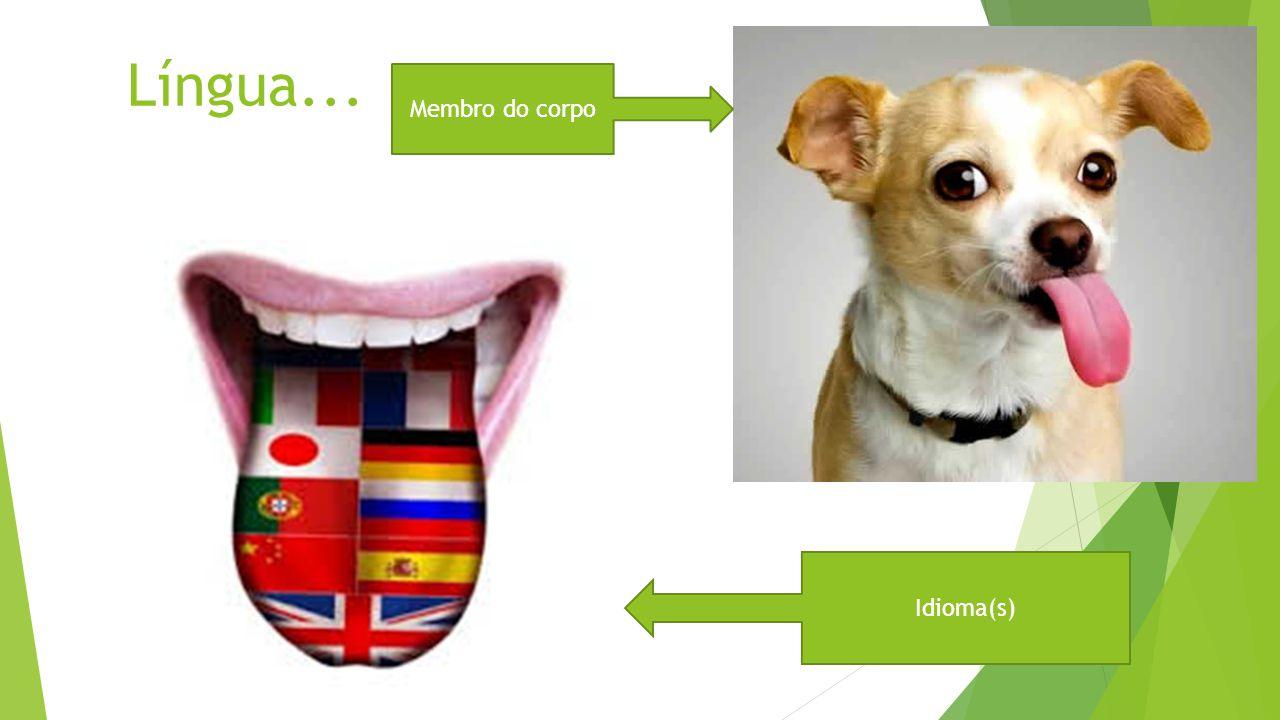 Língua... Membro do corpo Idioma(s)