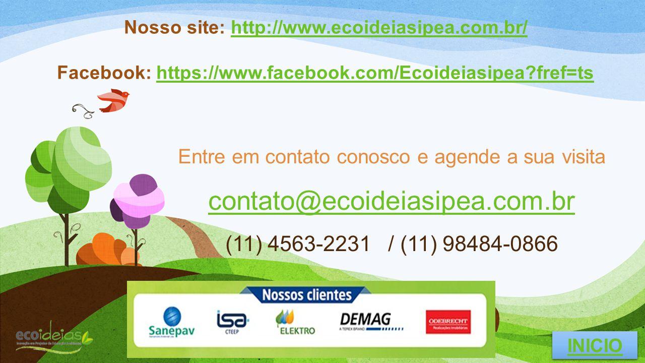 Nosso site: http://www.ecoideiasipea.com.br/
