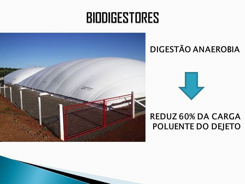 BIODIGESTORES DIGESTÃO ANAEROBIA REDUZ 60% DA CARGA POLUENTE DO DEJETO