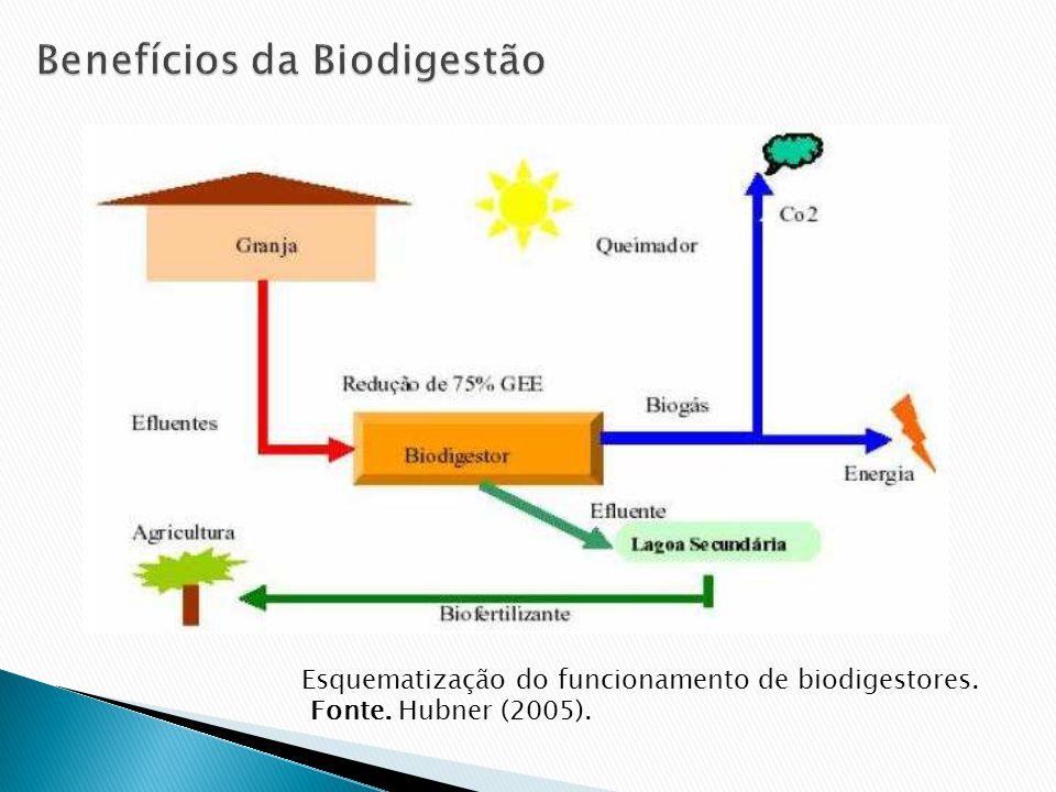 Benefícios da Biodigestão