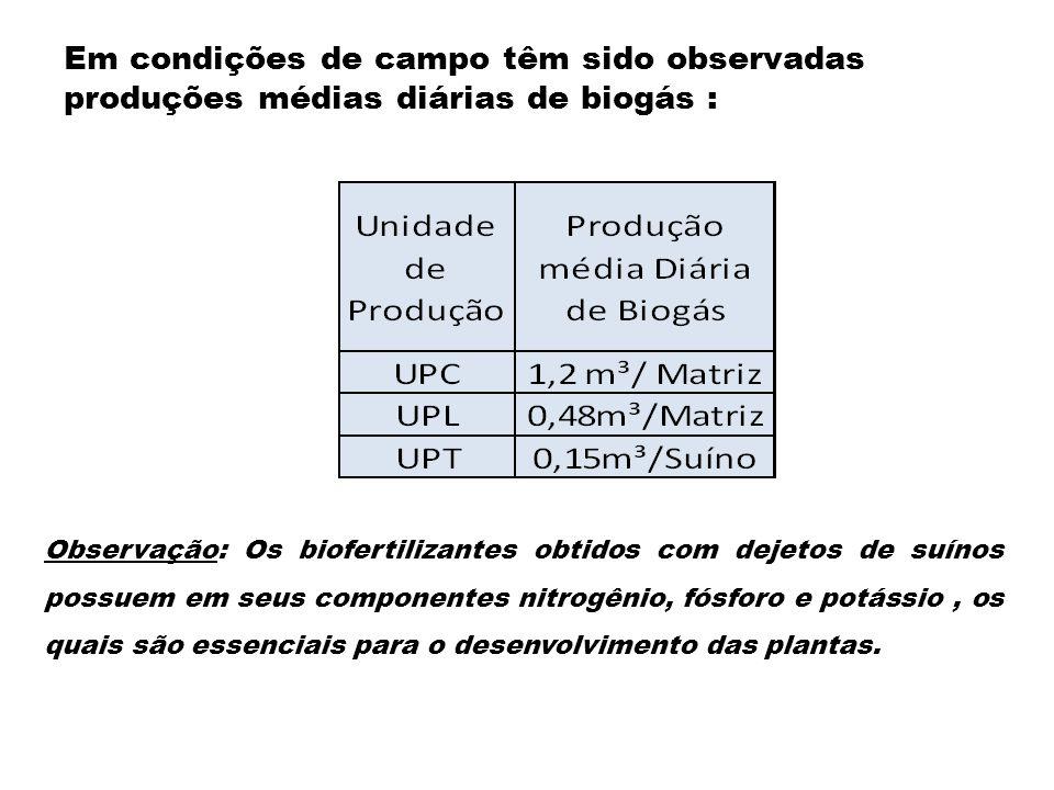 Em condições de campo têm sido observadas produções médias diárias de biogás :