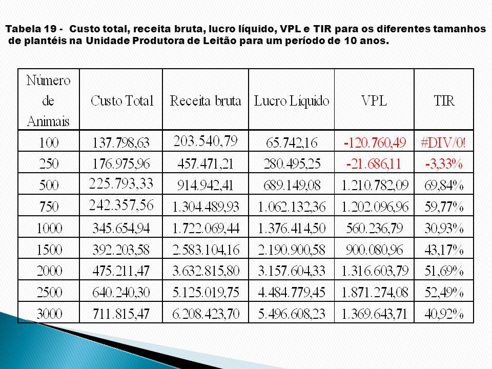 Tabela 19 - Custo total, receita bruta, lucro líquido, VPL e TIR para os diferentes tamanhos