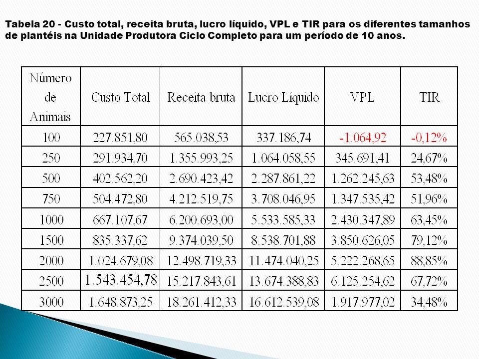 Tabela 20 - Custo total, receita bruta, lucro líquido, VPL e TIR para os diferentes tamanhos