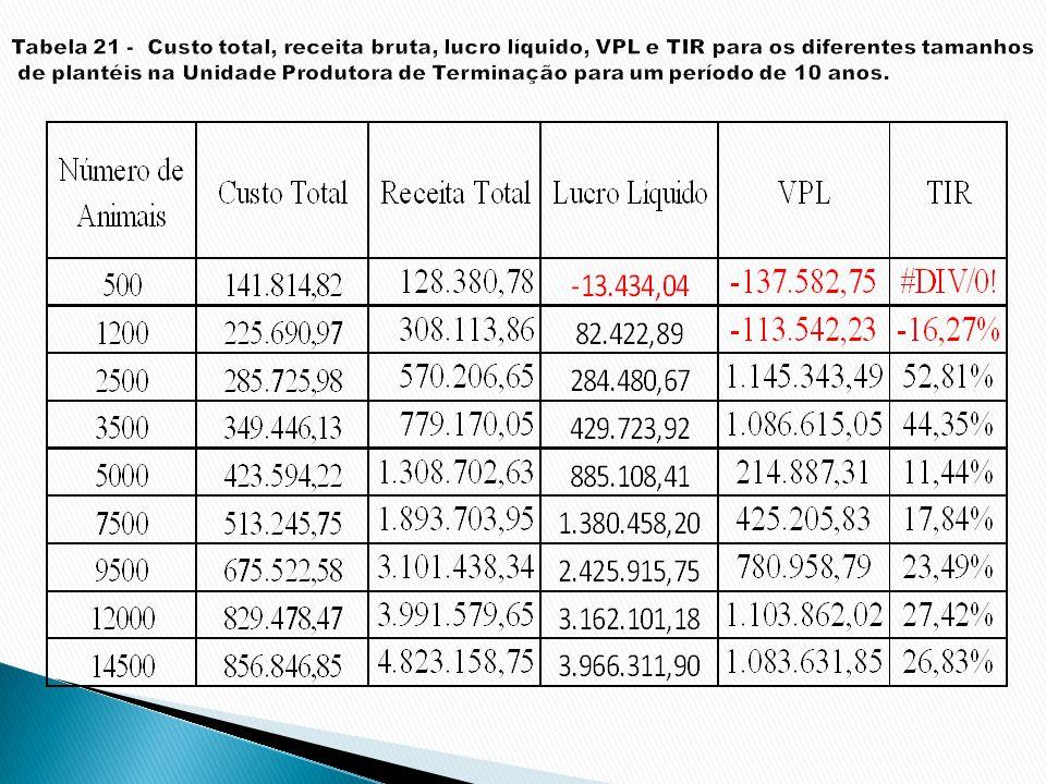 Tabela 21 - Custo total, receita bruta, lucro líquido, VPL e TIR para os diferentes tamanhos