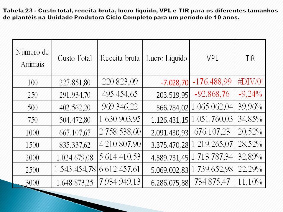 Tabela 23 - Custo total, receita bruta, lucro líquido, VPL e TIR para os diferentes tamanhos