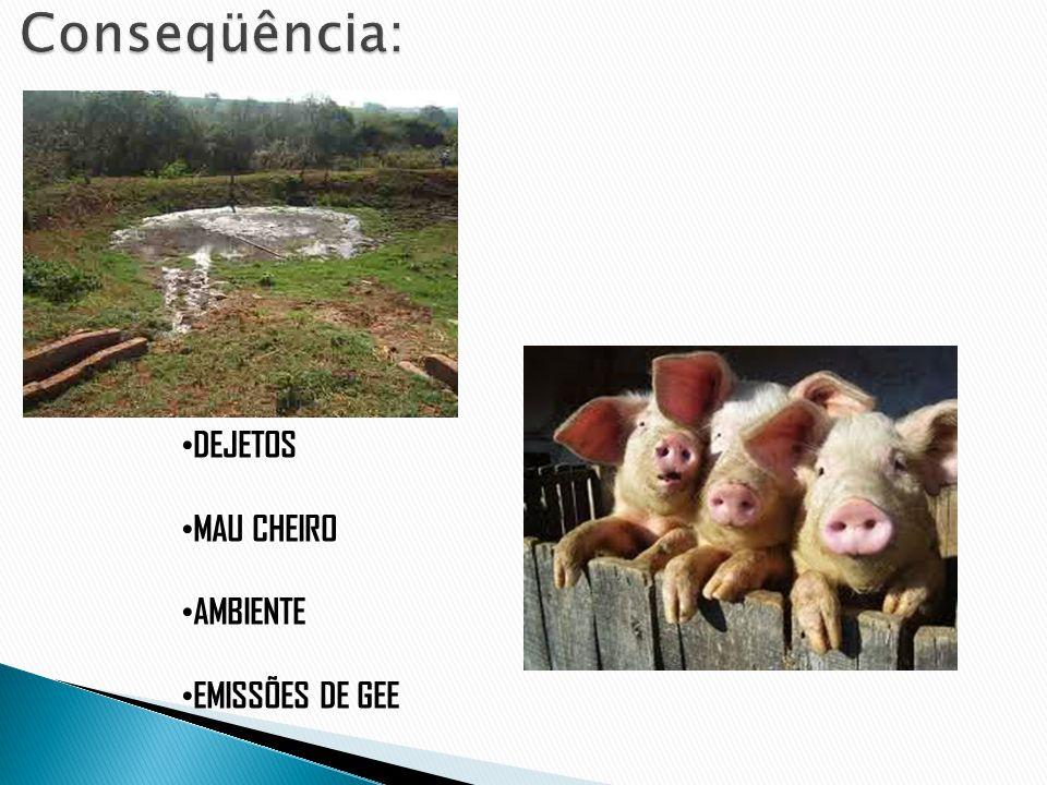Conseqüência: DEJETOS MAU CHEIRO AMBIENTE EMISSÕES DE GEE