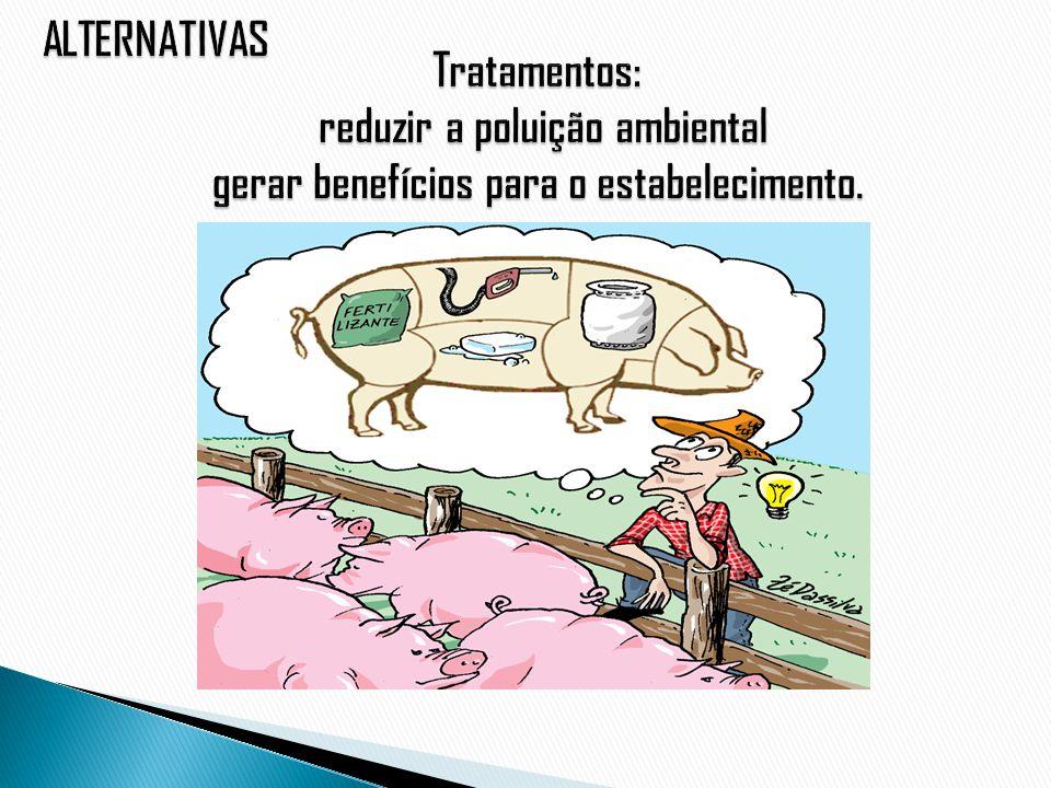 ALTERNATIVAS Tratamentos: reduzir a poluição ambiental gerar benefícios para o estabelecimento.