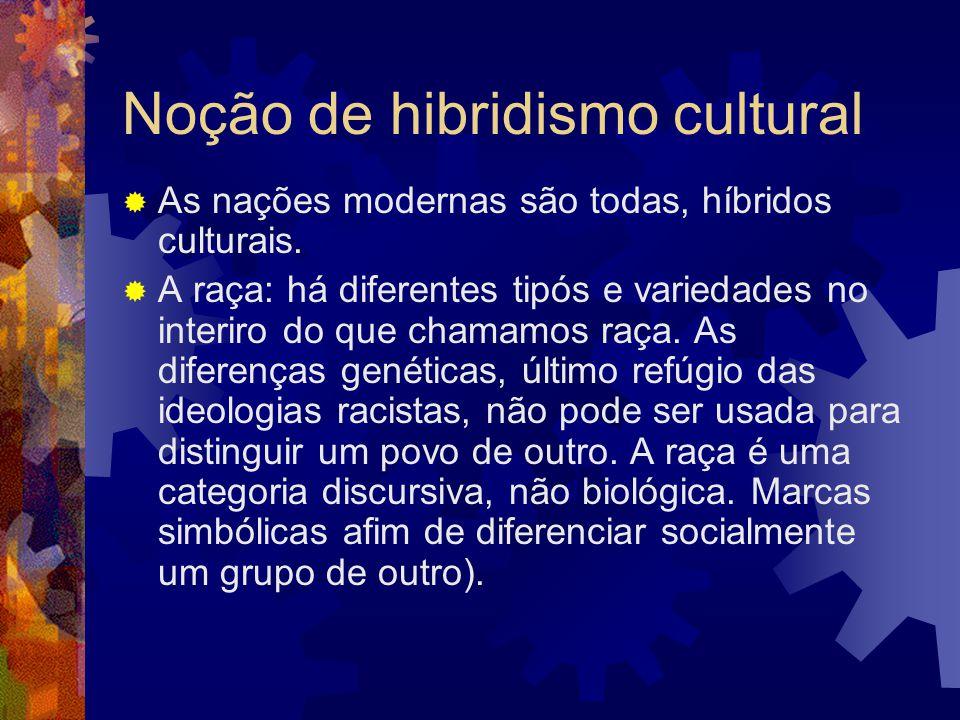 Noção de hibridismo cultural