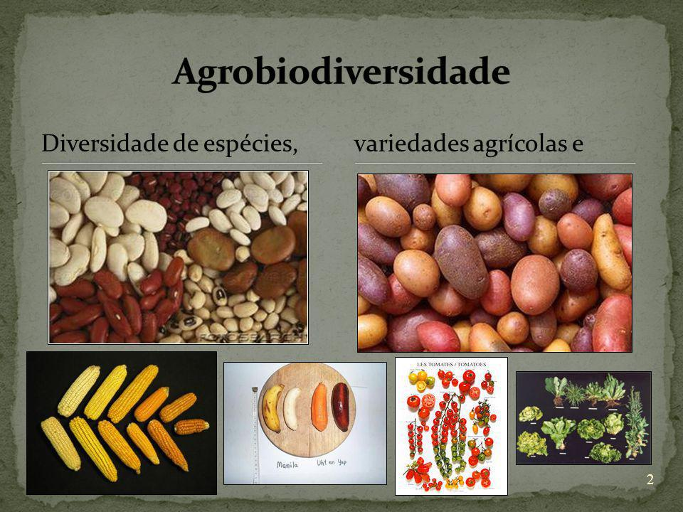 Agrobiodiversidade Diversidade de espécies, variedades agrícolas e