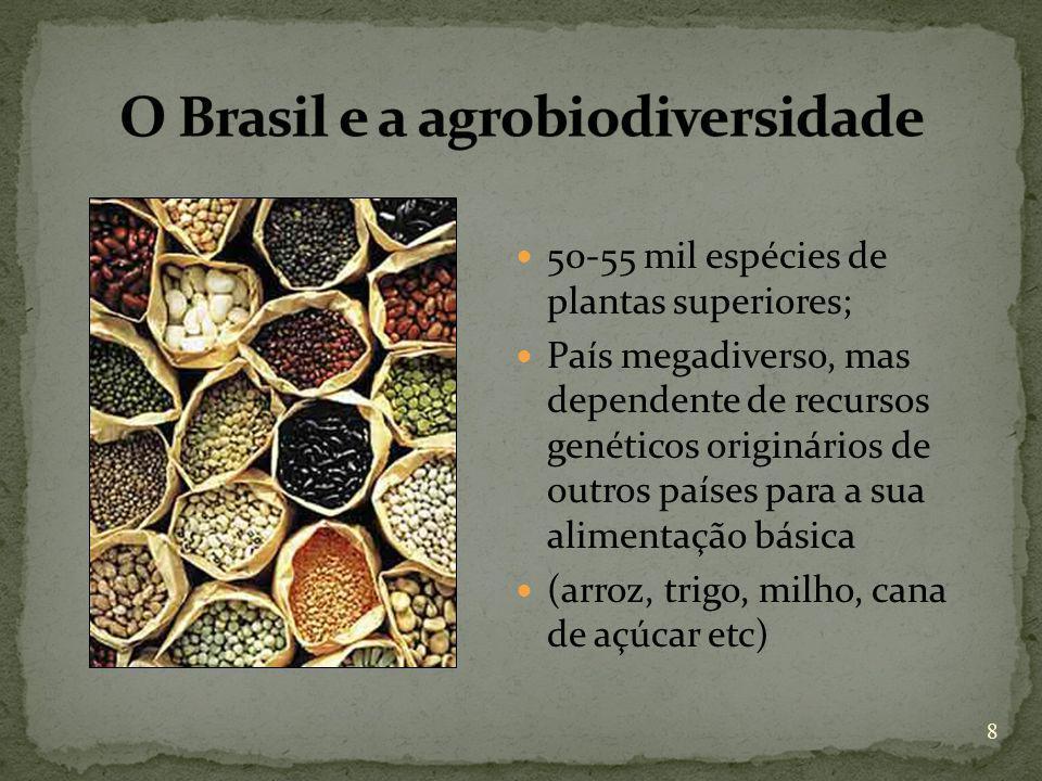 O Brasil e a agrobiodiversidade