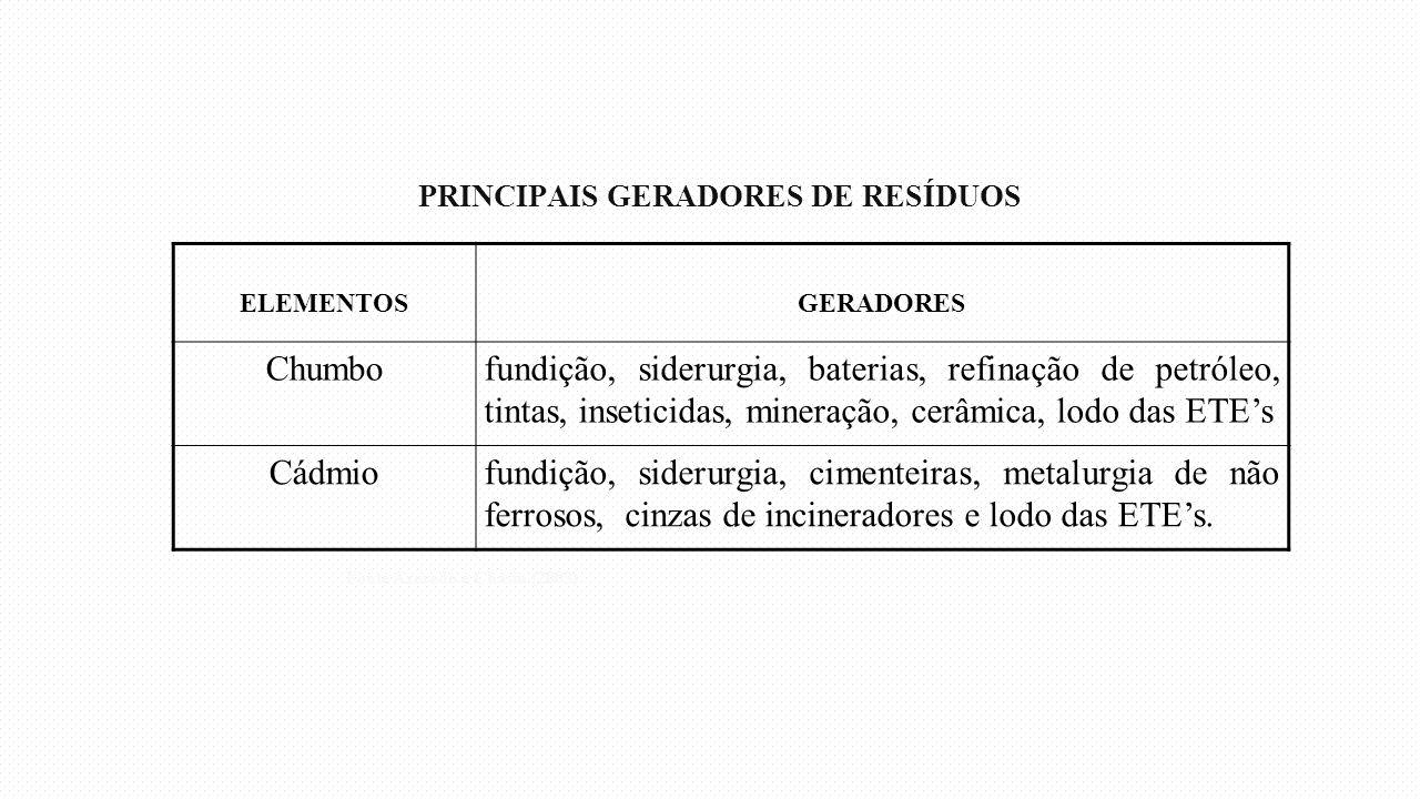 PRINCIPAIS GERADORES DE RESÍDUOS