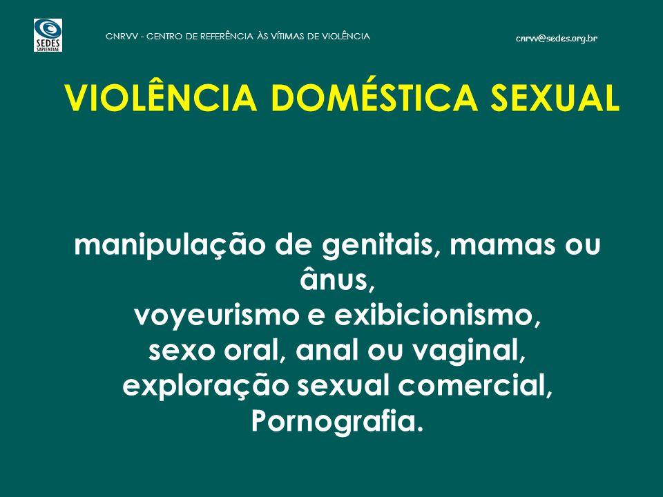 VIOLÊNCIA DOMÉSTICA SEXUAL manipulação de genitais, mamas ou ânus, voyeurismo e exibicionismo, sexo oral, anal ou vaginal, exploração sexual comercial, Pornografia.