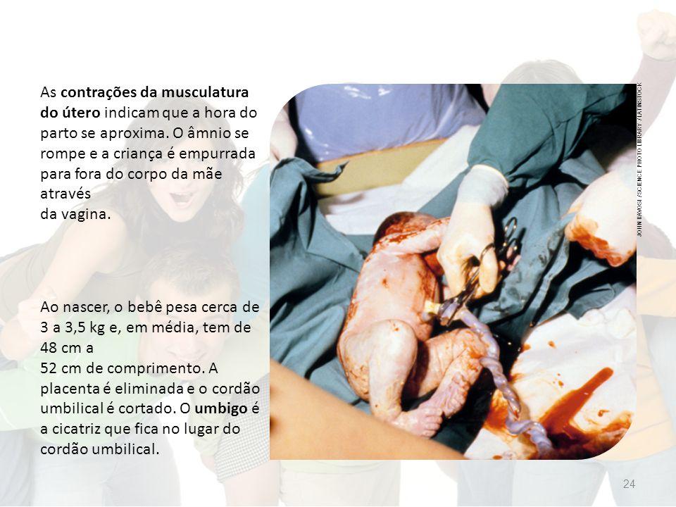 As contrações da musculatura do útero indicam que a hora do parto se aproxima. O âmnio se rompe e a criança é empurrada para fora do corpo da mãe através