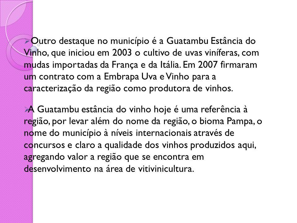 Outro destaque no município é a Guatambu Estância do Vinho, que iniciou em 2003 o cultivo de uvas viníferas, com mudas importadas da França e da Itália. Em 2007 firmaram um contrato com a Embrapa Uva e Vinho para a caracterização da região como produtora de vinhos.