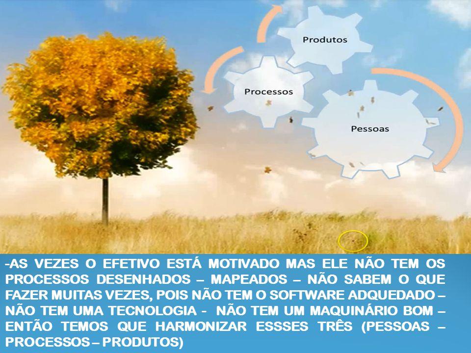 -AS VEZES O EFETIVO ESTÁ MOTIVADO MAS ELE NÃO TEM OS PROCESSOS DESENHADOS – MAPEADOS – NÃO SABEM O QUE FAZER MUITAS VEZES, POIS NÃO TEM O SOFTWARE ADQUEDADO – NÃO TEM UMA TECNOLOGIA - NÃO TEM UM MAQUINÁRIO BOM – ENTÃO TEMOS QUE HARMONIZAR ESSSES TRÊS (PESSOAS – PROCESSOS – PRODUTOS)