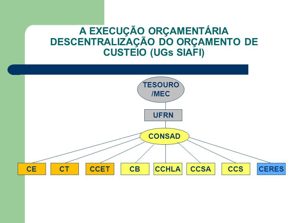 A EXECUÇÃO ORÇAMENTÁRIA DESCENTRALIZAÇÃO DO ORÇAMENTO DE CUSTEIO (UGs SIAFI)