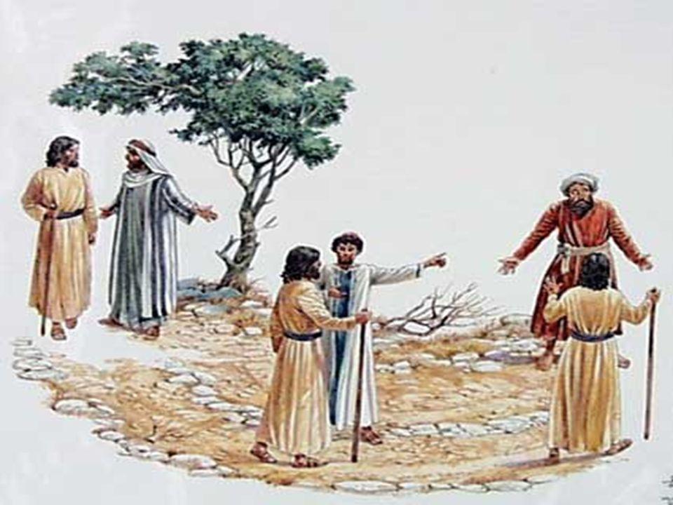 + Para Mateus, que escrevia para judeus convertidos ao cristianismo, - os primeiros trabalhadores chamados eram os cristãos oriundos do judaísmo;