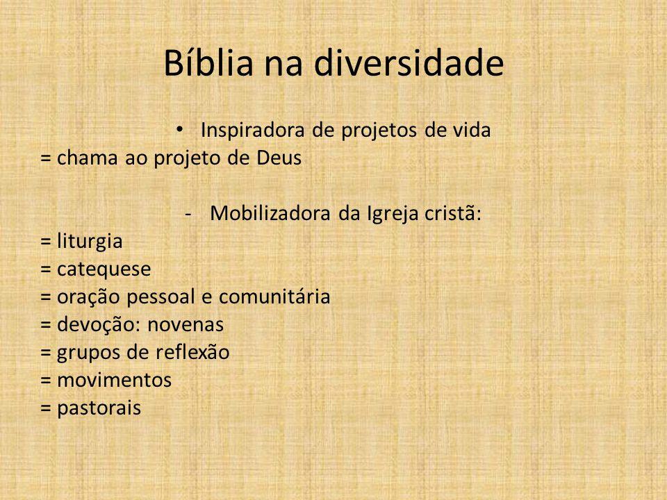 Bíblia na diversidade Inspiradora de projetos de vida