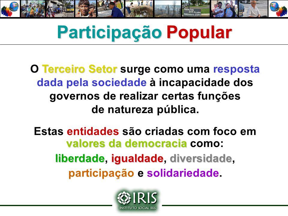 Participação Popular O Terceiro Setor surge como uma resposta dada pela sociedade à incapacidade dos governos de realizar certas funções.