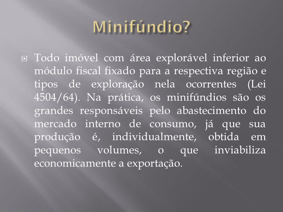 Minifúndio