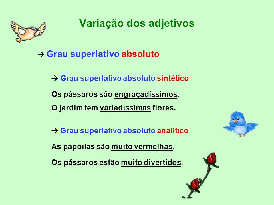 Variação dos adjetivos