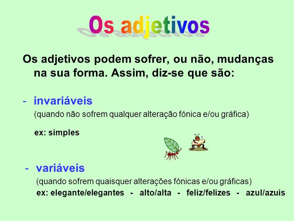 Os adjetivos Os adjetivos podem sofrer, ou não, mudanças na sua forma. Assim, diz-se que são: invariáveis.