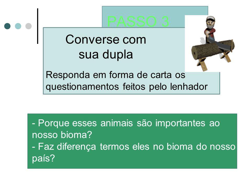 PASSO 3 Converse com sua dupla