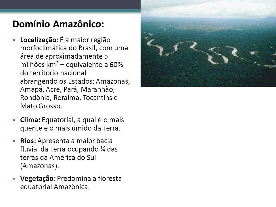 Domínio Amazônico: