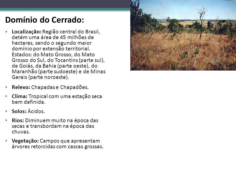 Domínio do Cerrado: