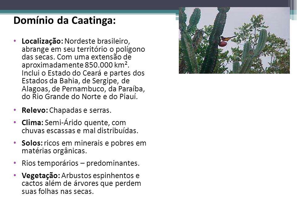 Domínio da Caatinga: