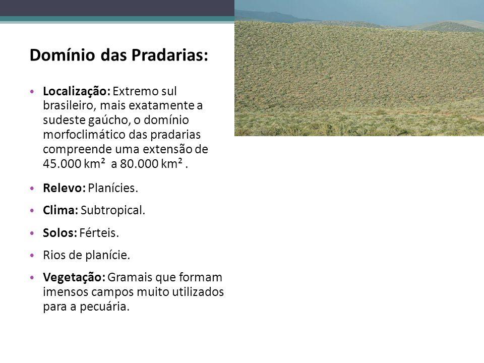 Domínio das Pradarias: