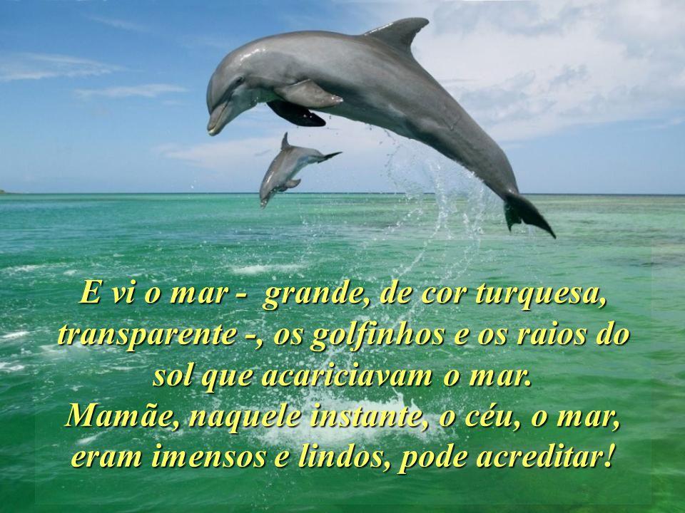 E vi o mar - grande, de cor turquesa, transparente -, os golfinhos e os raios do sol que acariciavam o mar.