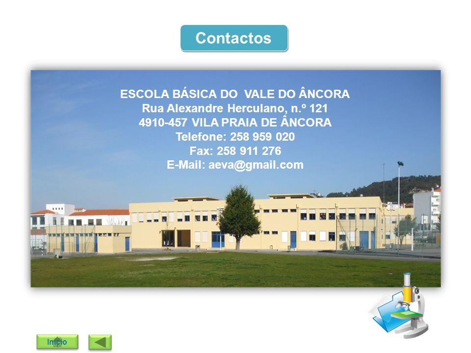 E-Mail: aeva@gmail.com