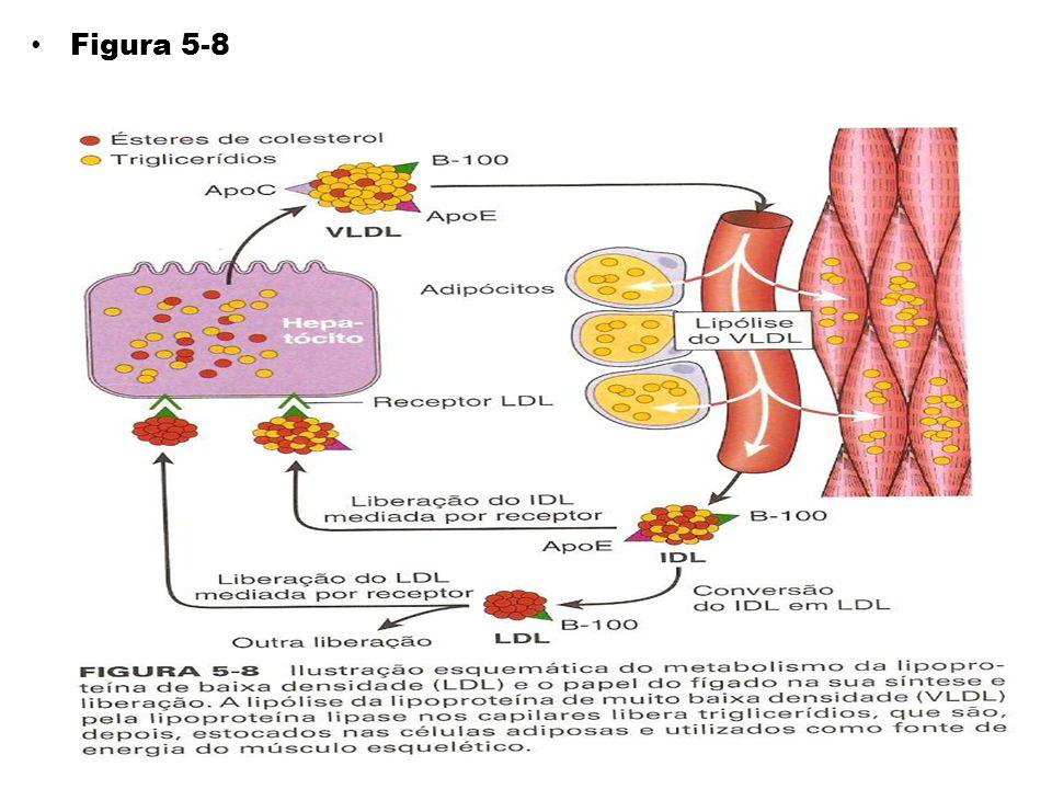 Figura 5-8