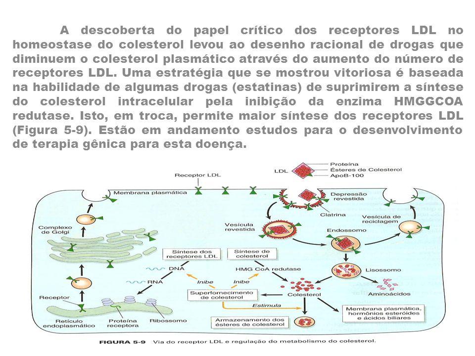 A descoberta do papel crítico dos receptores LDL no homeostase do colesterol levou ao desenho racional de drogas que diminuem o colesterol plasmático através do aumento do número de receptores LDL.