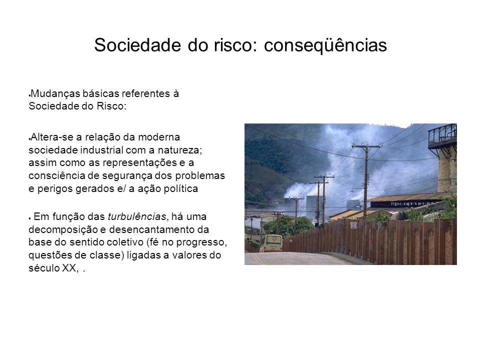 Sociedade do risco: conseqüências
