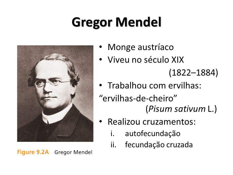 Gregor Mendel Monge austríaco Viveu no século XIX (1822–1884)