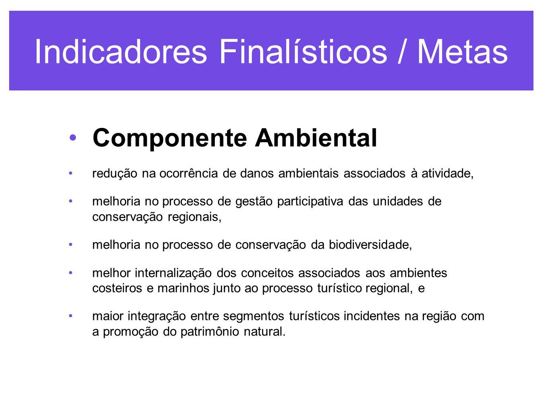 Indicadores Finalísticos / Metas