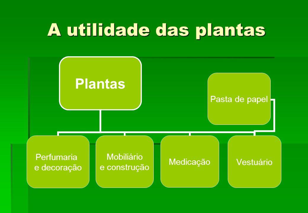 A utilidade das plantas