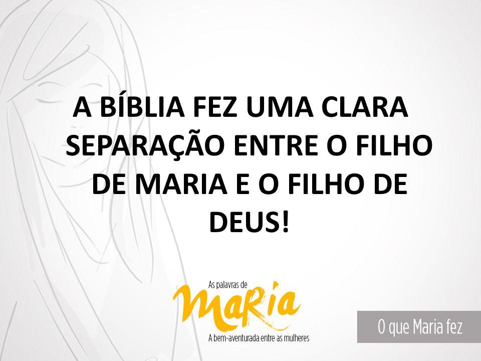 A BÍBLIA FEZ UMA CLARA SEPARAÇÃO ENTRE O FILHO DE MARIA E O FILHO DE DEUS!