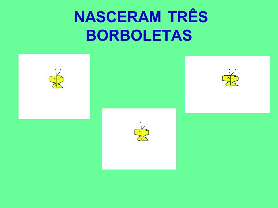NASCERAM TRÊS BORBOLETAS