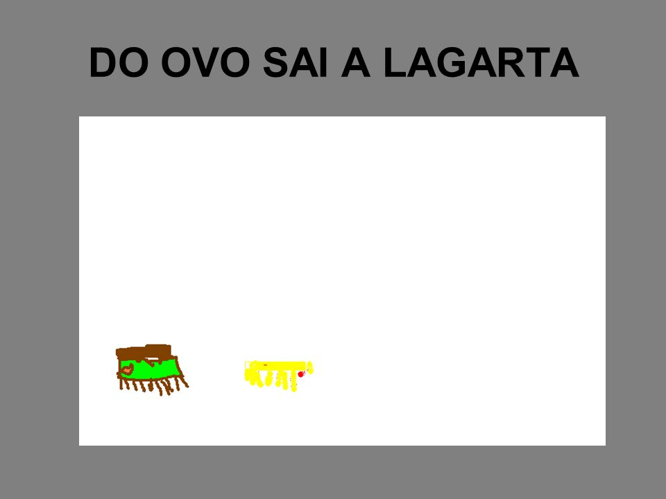 DO OVO SAI A LAGARTA