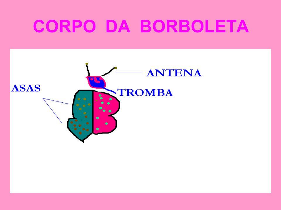 CORPO DA BORBOLETA