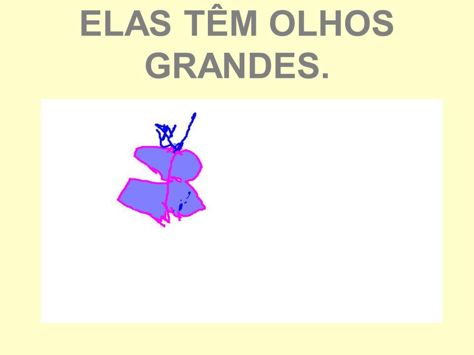 ELAS TÊM OLHOS GRANDES.