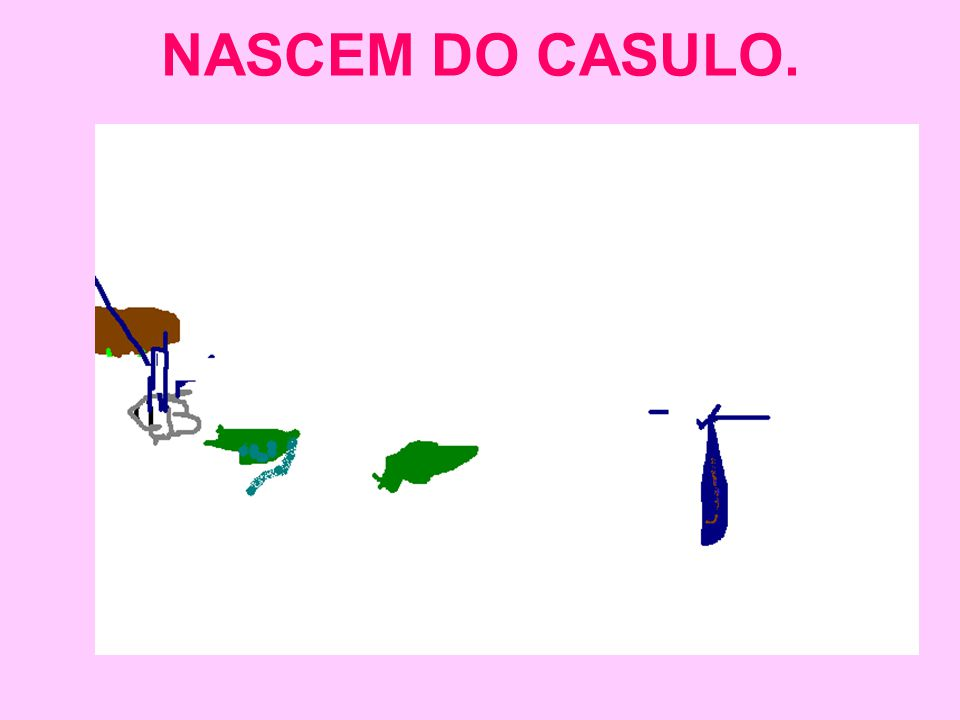 NASCEM DO CASULO.