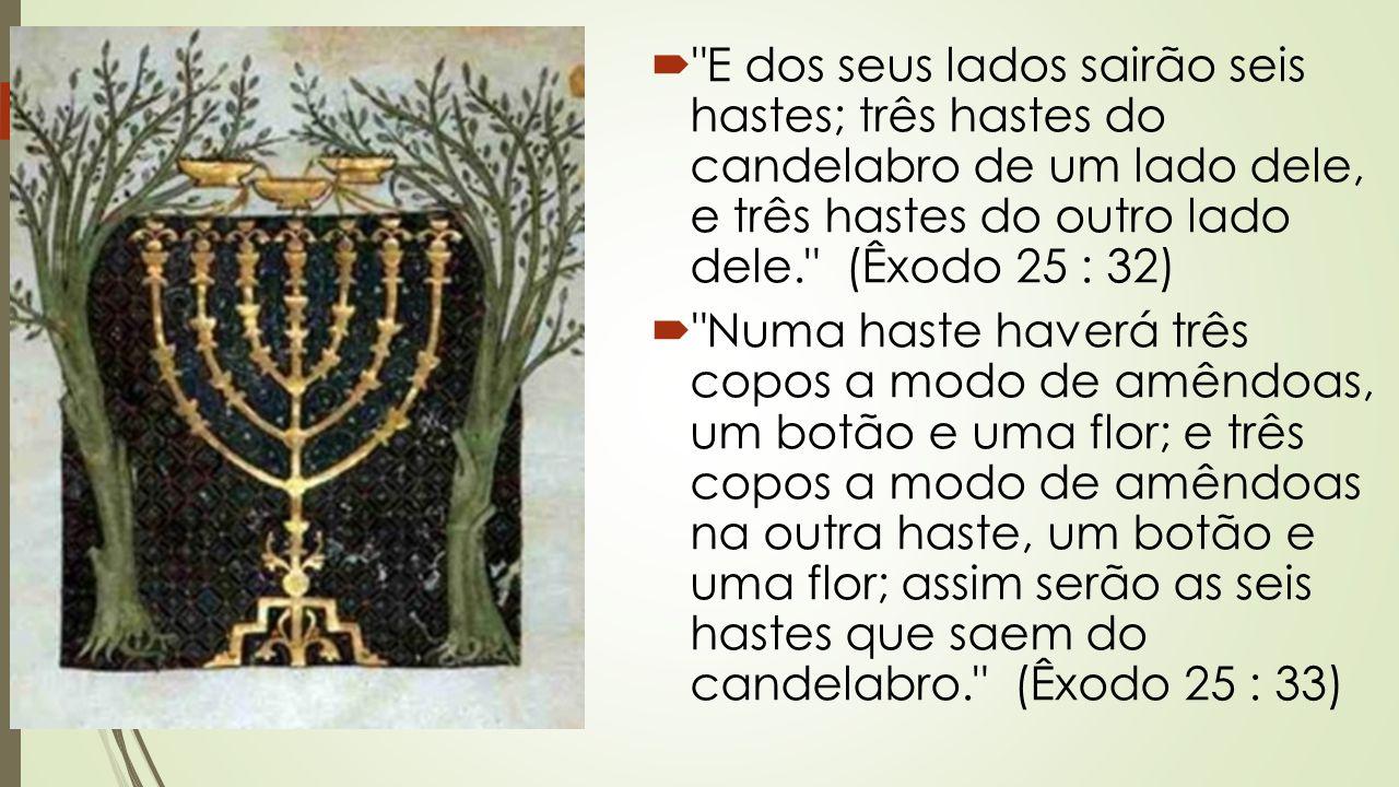 E dos seus lados sairão seis hastes; três hastes do candelabro de um lado dele, e três hastes do outro lado dele. (Êxodo 25 : 32)