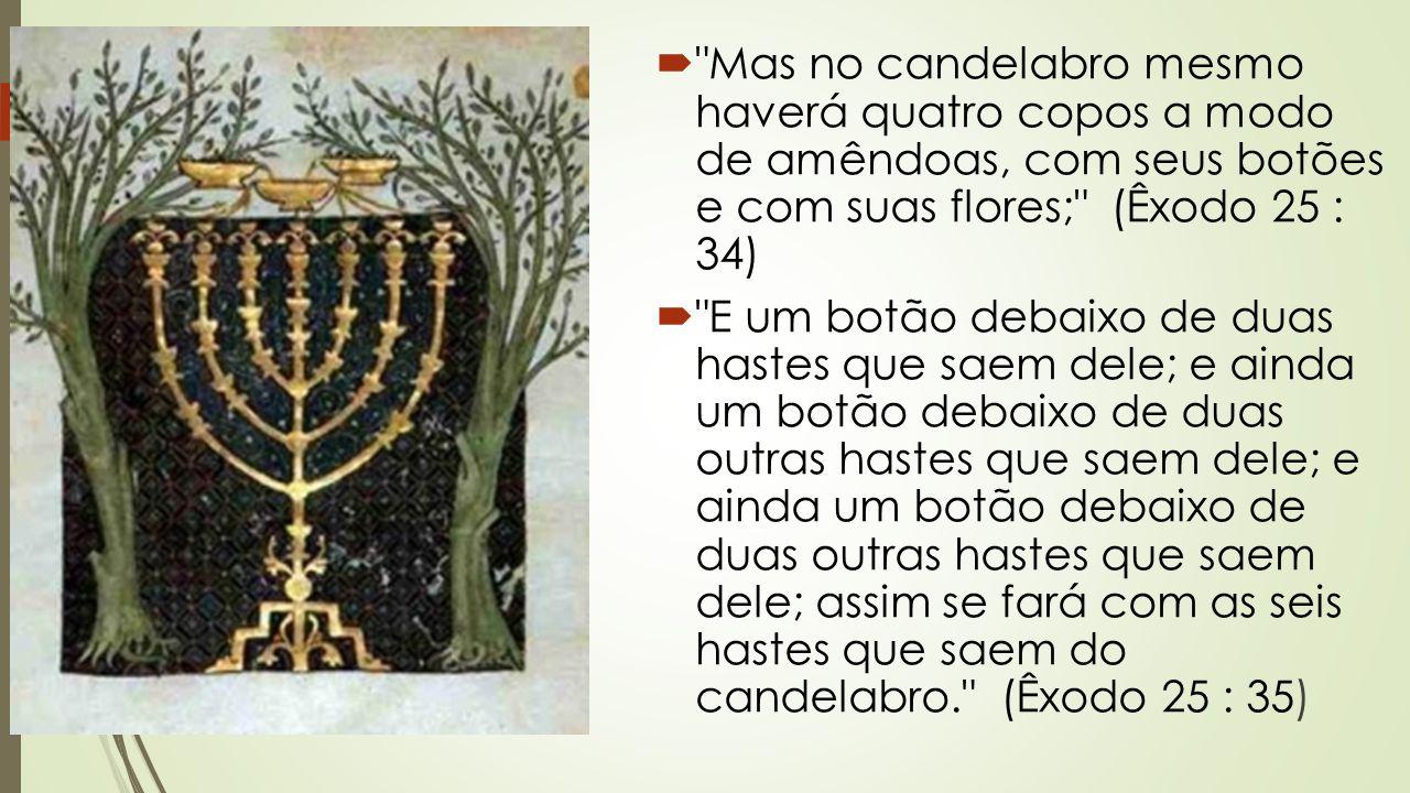 Mas no candelabro mesmo haverá quatro copos a modo de amêndoas, com seus botões e com suas flores; (Êxodo 25 : 34)
