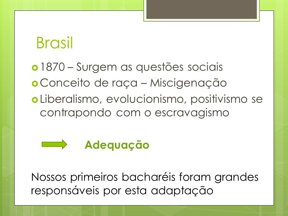 Brasil 1870 – Surgem as questões sociais