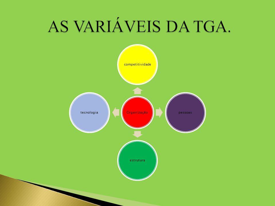 AS VARIÁVEIS DA TGA. Organização competitividade pessoas estrutura